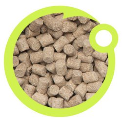 Пелетс Chapel Baits Pellets Coconutty 6mm 500g